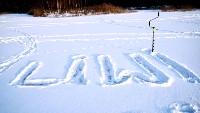 Liwi na śniegu